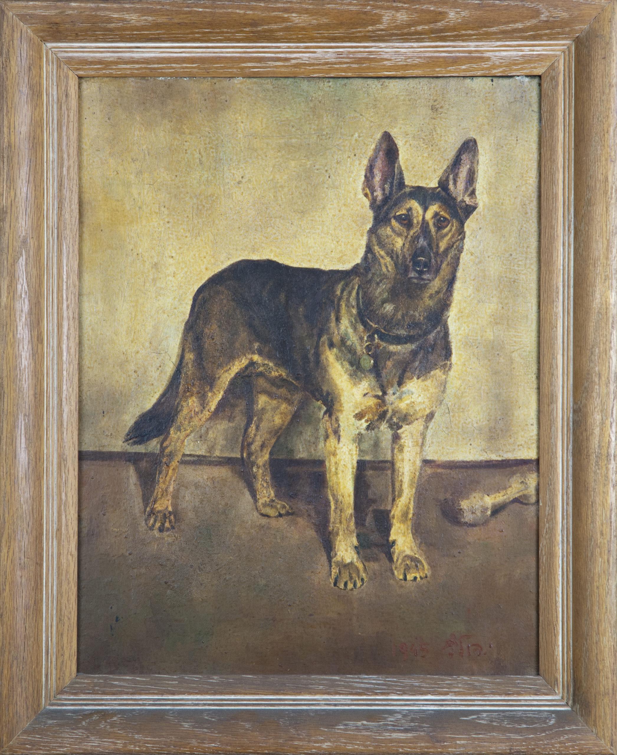 265 German Shepherd 1945 - Oil on Canvas - 14 x 18 - Frame: 18 x 22 x 2